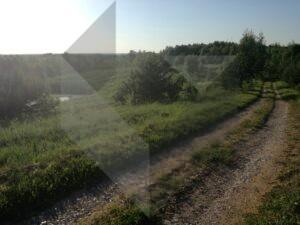 Parduodama sodyba Dzūkijoje su 13 ha teritorija