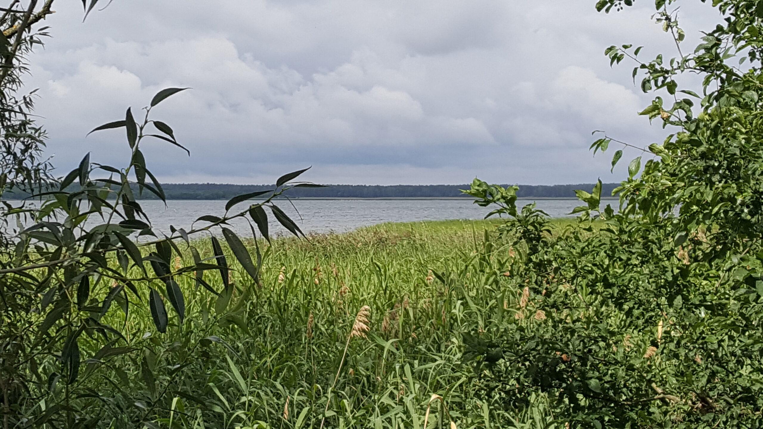 Sklypas su Metelio ežero pakrante