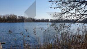 Sodybvietė ant Teizininkų ežero kranto