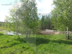 Sklypas su namo projektu, pamatais, šalia miško