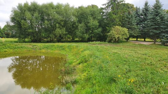 Gražus, žalias 0,79 ha sklypas namui šalia miesto…