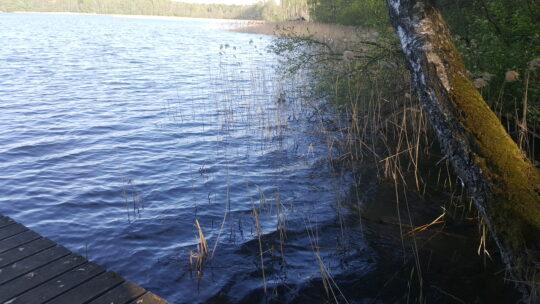 Sklypas ant Daugų (Didžiulio) ežero kranto Maironio g.
