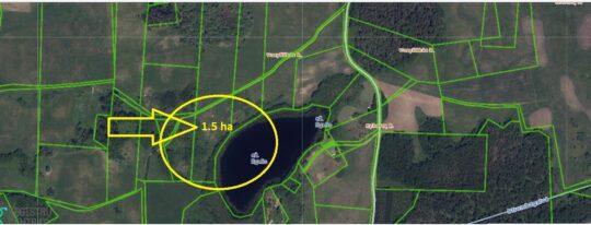Sklypas ant ežero kranto su statybos galimybėmis